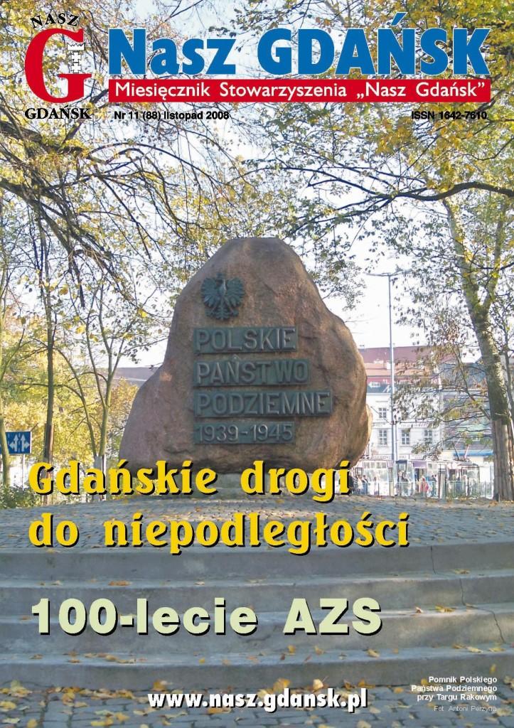NG 11-2008-page-001