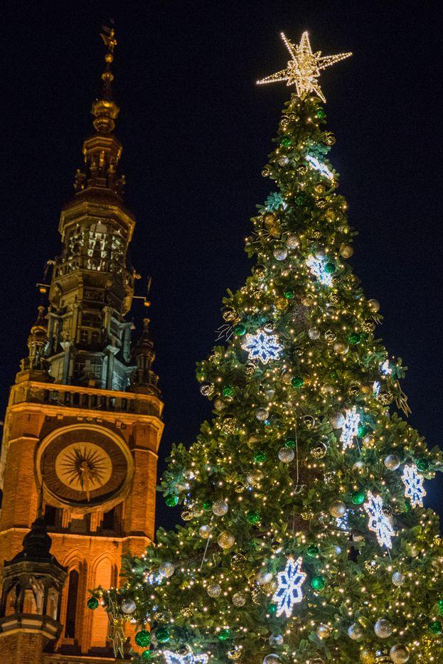 Gdańska choinka i świąteczne lampki